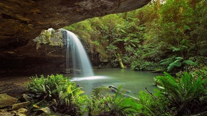 Australia Fern Greenery Nature Waterfall 2048x1365 Wallpaper