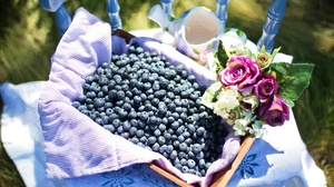 Berry Blueberry Fruit Still Life 5760x3840 wallpaper