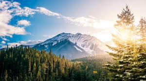 Cloud Forest Mountain 3840x2160 wallpaper