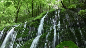 Greenery Moss Nature Waterfall 2048x1367 Wallpaper