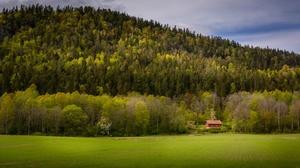 Field Forest House 2048x1149 Wallpaper
