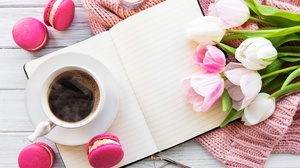 Coffee Cup Macaron Still Life Tulip 3718x2848 Wallpaper