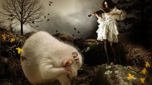 Photo Manipulation Ronny Welscher Women Violin Musician Musical Instrument Humor White Dress Animals 1620x1080 Wallpaper