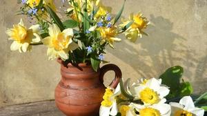 Daffodil Flower Still Life Vase White Flower Yellow Flower 1920x1472 Wallpaper
