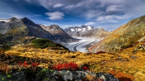 Alps Flower Glacier Mountain Switzerland 3872x2581 Wallpaper