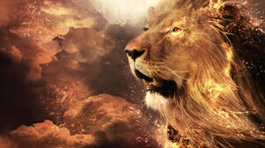 Lion 1920x1080 Wallpaper