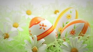 Daisy Easter Easter Egg Holiday White Flower 5616x3744 Wallpaper