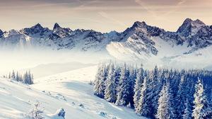 Earth Winter 2560x1600 Wallpaper