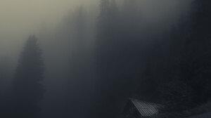 Trees Nature Mist Pine Trees Cabin Forest Snow Winter Dark 2048x1583 Wallpaper