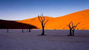 Desert Landscape Sand Nature Outdoors Trees Sky Dead Trees Namibia Africa 5184x3456 Wallpaper