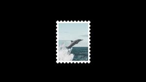 Postcard Noise Graphic Design Photoshop Digital Art Black White 2048x1080 Wallpaper