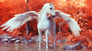 Artwork Animals Pegasus Wings Lake Orange Pond Horse Fantasy Art Trees Forest Nature White 3D 6000x3708 Wallpaper