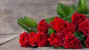 Bouquet Rose 5184x3456 wallpaper