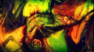 Animal Chameleon 1920x1080 Wallpaper