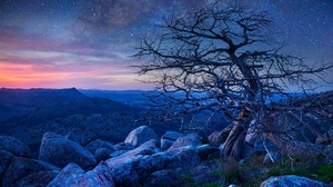 Nature Landscape Trees Sky Rock Stones Outdoors Sunlight Stars 1920x1200 Wallpaper