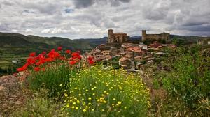 Castle Flower Poppy Spain 3840x2160 Wallpaper