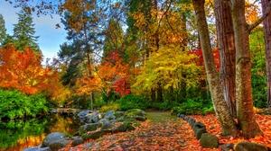 Fall Foliage Park Path Pond Rock Tree 5184x3456 wallpaper