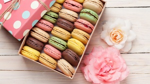 Colors Flower Gift Macaron Still Life Sweets 5616x3744 wallpaper