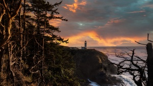 Tree Landscape Sunset Ocean Rock 2729x1816 Wallpaper
