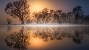 Fog Lake Nature Reflection Sunrise Tree 2500x1594 wallpaper