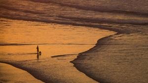 Sea Beach Landscape Evening Men Dog Sand Orange Sunlight Water 4000x2698 Wallpaper