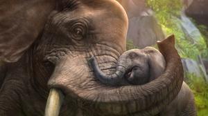Baby Animal 5120x2880 Wallpaper