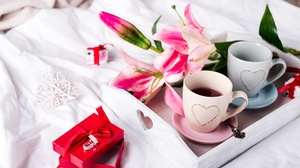 Flower Gift Drink Romantic Orchid Cup 6016x4016 Wallpaper