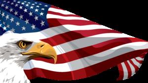 American Flag Eagle Flag 8000x4259 Wallpaper