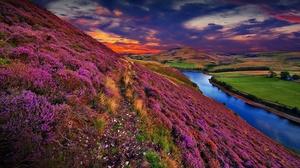 Sky Nature Sunset Flower Cloud Hill Scotland United Kingdom 1920x1080 Wallpaper