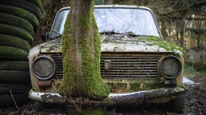 Old Car Car Wreck Vehicle Rust Moss Plants Trees Tires Lada 2101 LADA 2048x1152 Wallpaper