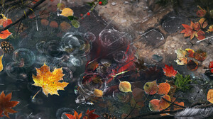 Max Suleimanov Digital Art Fall Leaves Rain 1920x1032 wallpaper