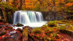 Earth Fall Foliage Forest Rock Tree Waterfall 3198x2363 Wallpaper