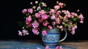 Flower Petal Pink Flower Pitcher Rose Still Life 3867x2694 Wallpaper