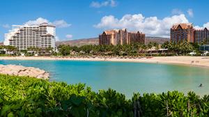 Sea Beach Panorama Landscape USA Hawaii Oahu Palm Trees City Outdoors 6143x2163 Wallpaper