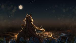 Anime Anime Girls Sky Stars Long Hair Animal Eyes City Lights Scarf Grass Flowers Moon Starfall Blon 2105x1488 Wallpaper