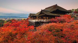Man Made Kyoto 1600x1000 wallpaper