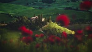 Italy Landscape Poppy Tuscany 2500x1406 Wallpaper