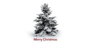 Christmas Merry Christmas Minimalist Snow Tree White 1600x1200 Wallpaper