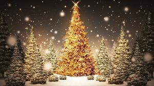 Christmas Christmas Lights Christmas Tree Snow 1920x1080 Wallpaper