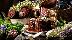 Cake Chocolate Cupcake Dessert Flower Pastry Still Life 6314x4209 Wallpaper