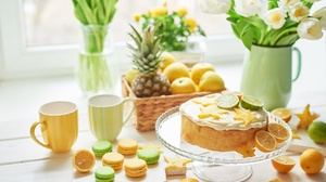 Cake Dessert Flower Lemon Macaron Still Life 7360x4912 Wallpaper