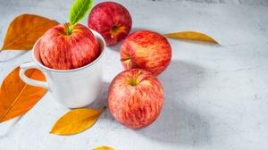 Apple Fruit 4896x3264 wallpaper