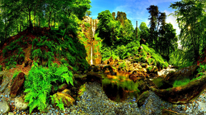 Nature Stone Forest Water 1920x1200 wallpaper