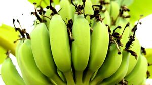 Food Fruit Bananas 1920x1080 Wallpaper
