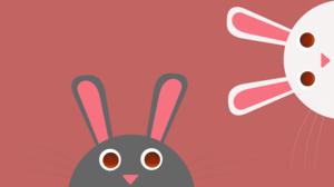 Rabbit 8000x4500 Wallpaper