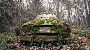 Outdoors Car Vehicle Wreck Plants 2048x1365 Wallpaper