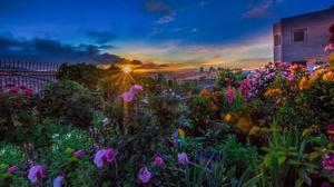 California City Flower San Francisco Sunset Usa 3250x2167 wallpaper