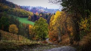 Fall Fence Fog Forest Hill Path 3840x2160 Wallpaper