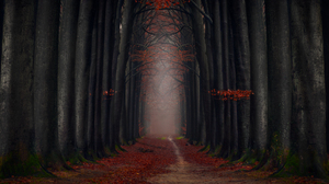 Dark Fall Foliage Forest Leaf Path Tree Lined 6908x3969 Wallpaper