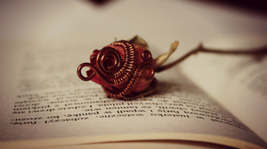 Book Flower Rose 2880x1800 Wallpaper
